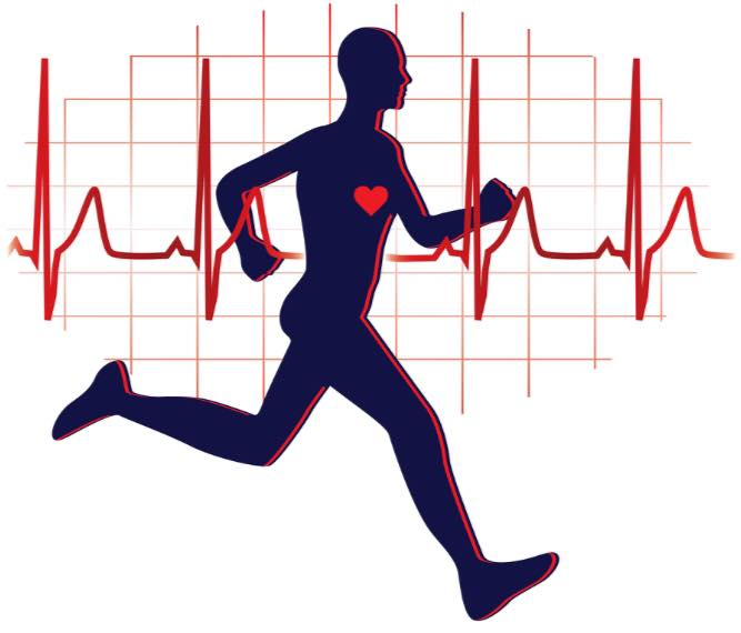 The Biggest Myths About Cardio